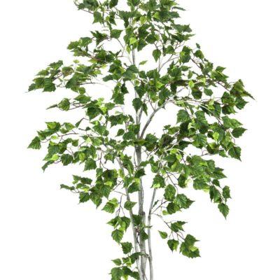 EUROPALMS Birch tree, 180cm