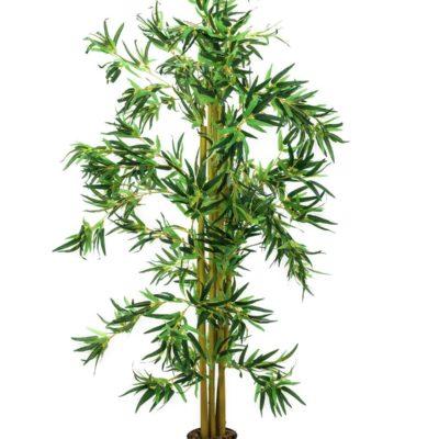 EUROPALMS Bamboo multi trunk, 180cm