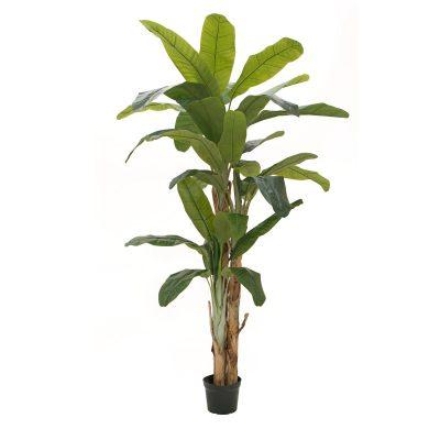 EUROPALMS Banana tree, artificial plant, 240cm