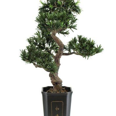 EUROPALMS Bonsai podocarpus, artificial plant, 80cm